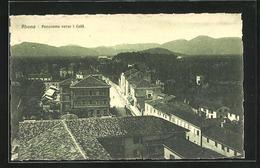 Cartolina Albano, Panorama Verso I Colli - Other Cities