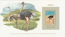 NIGER Ostrich.WWF.BARGAIN.!! - Autruches