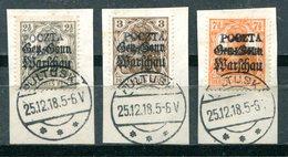 POLOGNE - Gouvernement Provisoire - Surcharge Locale De PULTUSK (3 Valeurs) - Usados