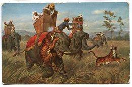 CPA - Carte Postale - Belgique - Fantaisie - Éléphant - Tigre - Savane - 1909 (M7553) - Afrique