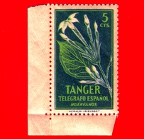 TANGER - Nuovo - 1948 - Telegrafo Espanol - Fiori - Huerfanos -  5 - Cinderellas