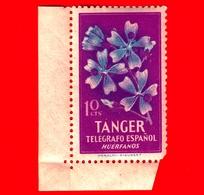 TANGER - Nuovo - 1948 - Telegrafo Espanol - Fiori - Huerfanos - 10 - Cinderellas