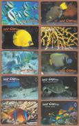 AC - TURK TELECOM PHONECARDS -  SEA CREATURES FULL SET OF 26 CARDS - Puzzles