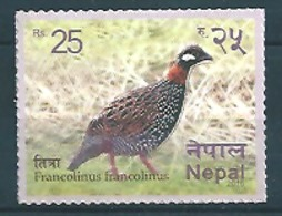 Nepal (2016) - Set -  /  Aves - Birds - Oiseaux - Vogel - Andere