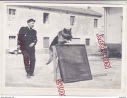 Au Plus Rapide Gendarmerie Nationale Maitre Chien Photo Argentique Beau Format - Guerra, Militari