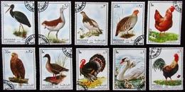 SHARJAH Lot De 10 Timbres Oiseaux Aigle Cygne Poule Coq Dindon Etc... Oblitérés - Konvolute & Serien