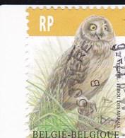Belgique YV 4199 O 2012 Chouette - Owls