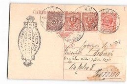 17050 DUMMIO X TORINO - Interi Postali