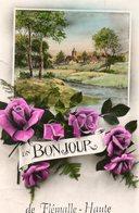 Belgique. CP. Un Bonjour De FLEMALLE HAUTE. Paysage, Fleurs, - Flémalle