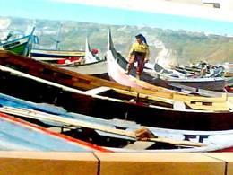 PORTUGAL NAZARE BERCHE N1965 HA8218 - Portogallo