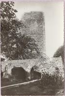 Lhuis (01) - Tour Du Château (XIIè) - France