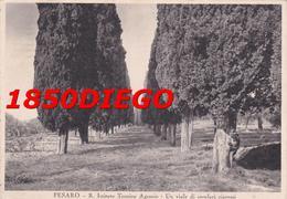 PESARO - R- ISTITUTO TECNICO AGRARIO F/GRANDE VIAGGIATA 1935 ANIMAZIONE - Pesaro