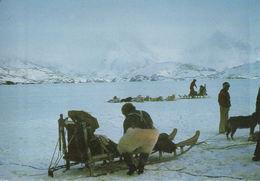 Ammassalik Départ Des Traîneaux Pour La Chasse (Attelages De Chiens) - Groenland
