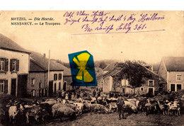 """MESSANCY - Le Troupeau - METZIG - Die Heerde - (avec Cachet Postal """"Feldpost"""") - Messancy"""