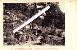 DAVERDISSE-sur-Lesse - Le Bois Coupé Au Bord De La Lesse - Daverdisse
