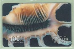 Solomon Island - Remote Memory - 1999 Shells - $100 - SOL-R-04 - VFU - Salomon