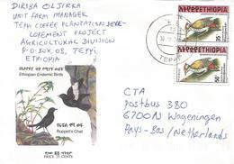 Ethiopia 2000 Teppi Woodpecker Cover - Ethiopië