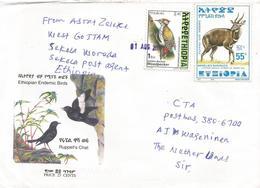 Ethiopia 2001 Sikela Postal Agency Woodpecker Bushbuck Cover - Ethiopië
