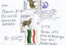 Ethiopia 2005 Kombolcha Flag Bushbuck Registered Cover - Ethiopië