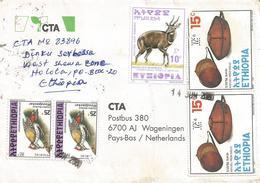 Ethiopia 2001 Holota Basket Woodpecker Bushbuck Cover - Ethiopië
