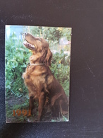 Hunting Serie - Dog - Setter -   - Small Calendar -  1991 - Calendriers