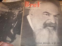 BREF 46 /TRISTAN BERNARD DEAUVILLE /DANIEL MAYER GUY MOLLET /ETATS UNIS SEGREGATION / MONNERVILLE EBOUE SENGHOR - Livres, BD, Revues