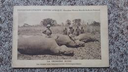 CPA CROISIERE NOIRE LA CHASSE AUX HIPPOPOTAMES OUBANGUI CHARI EXPEDITION CITROEN CENTRE AFRIQUE 2 EME MISSION HAARDT AUD - Hippopotames