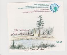 Norfolk Island SB 11 1999 Resolution Booklet.mint - Norfolk Island
