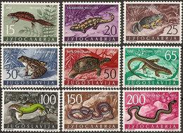 Yugoslavia 1962 Animals (Fauna) - Reptiles, MNH (**) Michel 1007-1015 - Reptiles & Batraciens