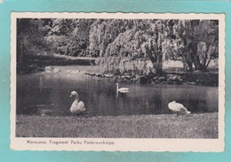 Old Small Post Card Of Fragment Parku Paderewskiego,Warszawa,Poland,N47. - Poland