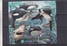 Orques - Requins - Burundi - COB BF 327 ** - MNH - NON Dentelé - Protection De La Nature - Valeur 36 Euros - Burundi