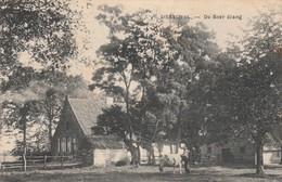 Dessel , Desschel  ,  De Boer  étang - Dessel