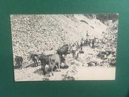 Cartolina Cava Di Marmo - Massa Carrara - 1905 - Massa