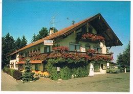 KAR-57  IRSCHENBERG With KARMANN GHIA - Postcards
