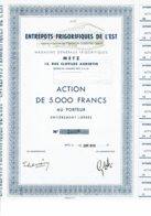 57-ENTREPOTS FRIGORIFIQUES DE L'EST. METZ. Moselle - Shareholdings
