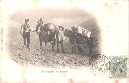 FR66 CERDAGNE - ANDORRE - Fau Et Campistro - Précurseur - Los Trajines - Les Muletiers - Animée - Belle - Autres Communes