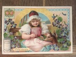 CHROMO CHOCOLAT SUCHARD S53 1897 Flower Girls Femmes Fleurs Viola Odorata Violette - Suchard