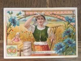 CHROMO CHOCOLAT SUCHARD S53 1897 Flower Girls Femmes Fleurs Centaurea Cyanus - Suchard