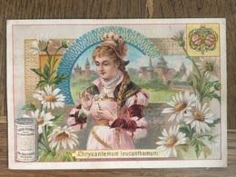 CHROMO CHOCOLAT SUCHARD S53 1897 Flower Girls Femmes Fleurs Chrysantenum Leucanthenum - Suchard