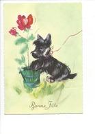 21527 - Bonne Fête Chien Portant Un Pot De Fleurs Rose (format 10X15) - Fêtes - Voeux