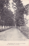 CPA 76 @ MOTTEVILLE - Une Avenue @ Edition Delamare Cliché Bourdain - Autres Communes
