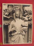 Lot De 18 Grandes Photos De La Cathédrale D'Amiens + Carte Postale Triple. Regnaut. Picardie Hauts De France - Picardie - Nord-Pas-de-Calais