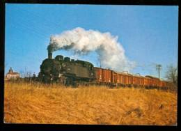 Provins  Train De Marchandise à Provins En 1972 Carte Rare - Provins