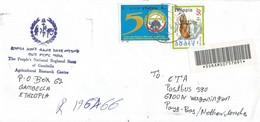 Ethiopia 2001 Gambella University Rock Hyrax Registered Cover - Ethiopië