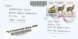 Ethiopia 2011 Endaselasie Endemic Bird Bushbuck Registered Cover - Ethiopië