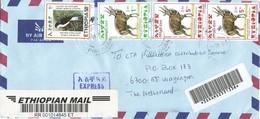 Ethiopia 2005 Dire Dawa Swallow Endemic Bird Bushbuck Registered Cover - Ethiopië