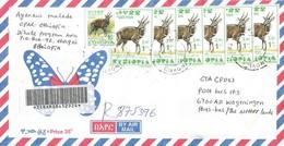 Ethiopia 2007 Chagni Bushbuck Registered Cover - Ethiopië