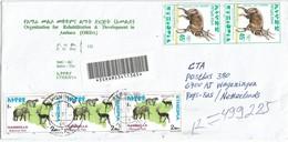 Ethiopia 2002 Bahirdar Elephant Leopard Cat Antilope Bushbuck Registered Cover - Ethiopië