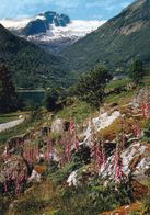 1 AK Norwegen * Blick Auf Balestrand Im Sognefjord * - Norwegen