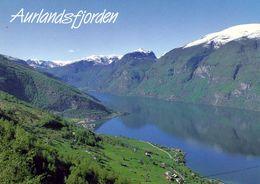 1 AK Norway Norwegen * Ansicht Des Aurlandsfjord * - Norwegen